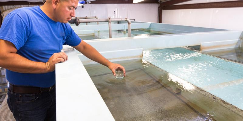 Employee testing the water at the Triple Peak plant